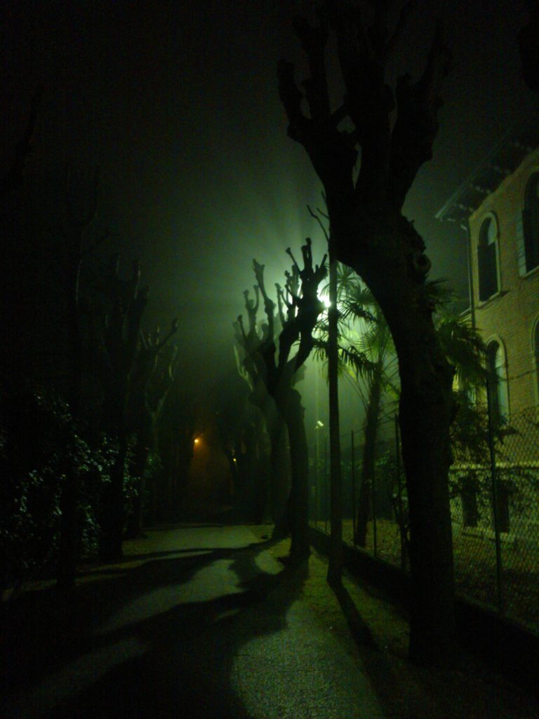 Venise peut avoir un caractère bien trempé ! Pluie, humidité, moustiques, brouillard... Petit tour des aspects de la sérénissime en hiver!